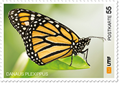 """Schmetterling""Postkarte 55 Ct."